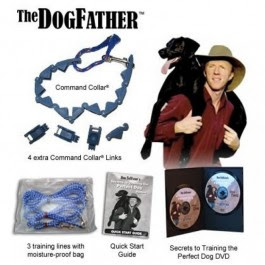 Dogfather Hero